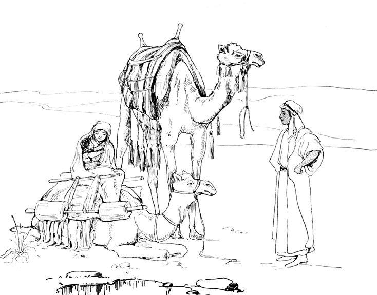 Camels Resting In The Desert With Parents And Baby Coloring Page
