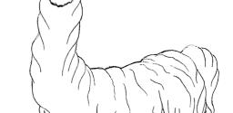 Cartoon Llamas and Mountains Coloring Page Printables