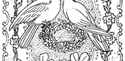 Doves Kissing in Peace and Love : Great for Valentines Day Coloring Printable
