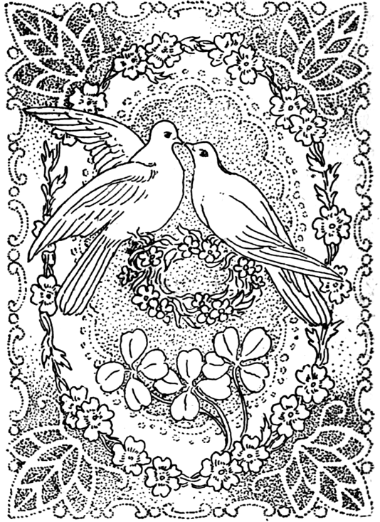 Doves Kissing in Peace and Love Great for Valentines Day