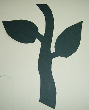 sunflower-stem
