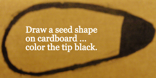 Draw a seed shape on cardboard... color the tip black