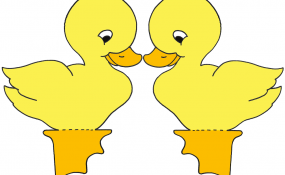Baby Chick Color Template