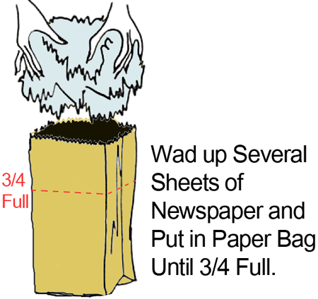 Wad up several sheets of newspaper and put in paper bag until 3/4 full.