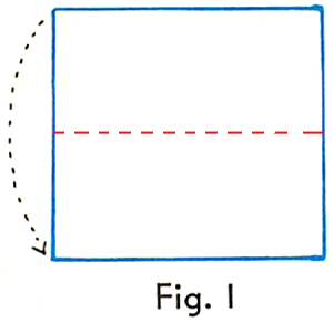 First fold a square of paper through the middle as shown in the illustration.