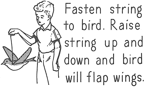 Fasten string to bird.