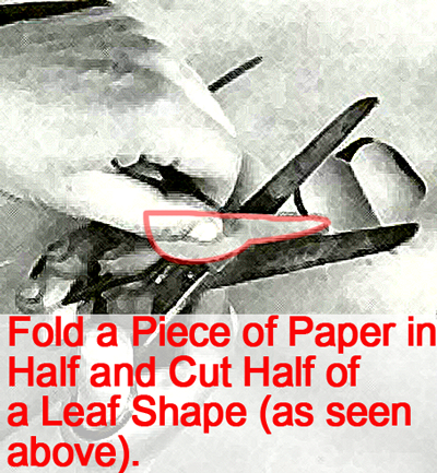 Fold a piece of paper in half and cut half of a leaf shape