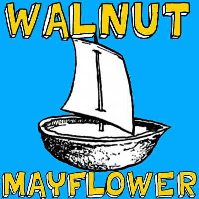 Mayflower Walnut Boat