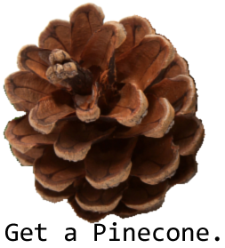 Get a pinecone.