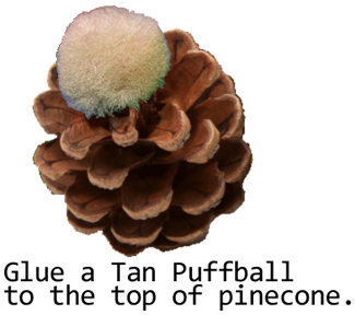 Glue a tan puffball to the top of pinecone.