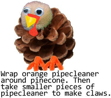 Wrap orange pipe cleaner around pinecone.