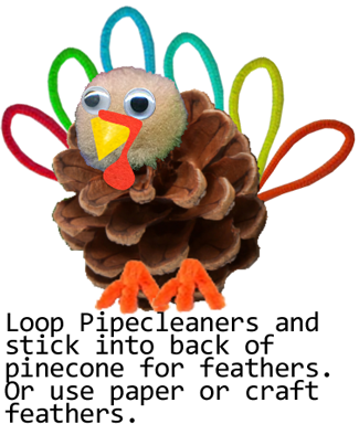 Loop pipe cleaners and stick into back of pinecone for feathers.