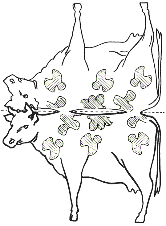 Making Stand-Up Paper Cows