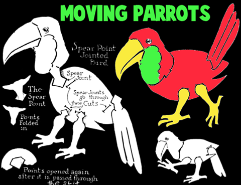 Making Moving Parrots and Macaws