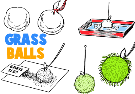 How to Make Hanging Grass Balls