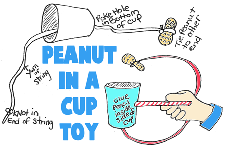 Peanut in a Cup Toy