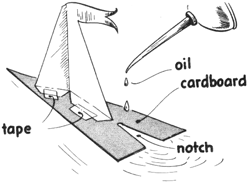 Cardboard Oil Powered Sailboat Craft