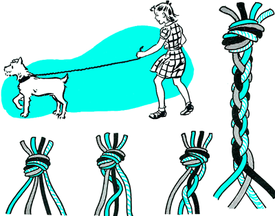 How to Make a Strong Braided Dog Leash