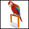 Green-winged   macaw Paper Craft Mode3l