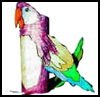 Parrot   Toilet Paper Roll Crafts for Toddlers & Preschoolers