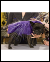 Illuminated   Porcupine Dog Costume