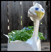 Craft   a Swan Plant Container Craft to Make