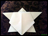 How   to Make an Origami Turtle with Paper Folding Diagram