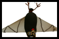 Upside Down Fruit Bat Craft