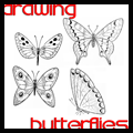 Drawing Butterflies the easy ways
