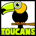 How to Draw Cartoon Toucans