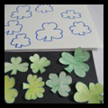 Saint Patrick's Day Shamrocks Matching Game