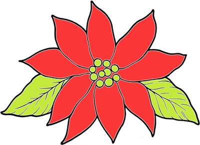 Poinsettia Pictures