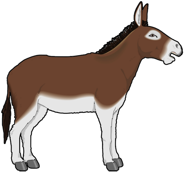 Donkey Crafts For Kids Make Your Own Donkeys Amp Mules With