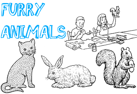 Furry Animals