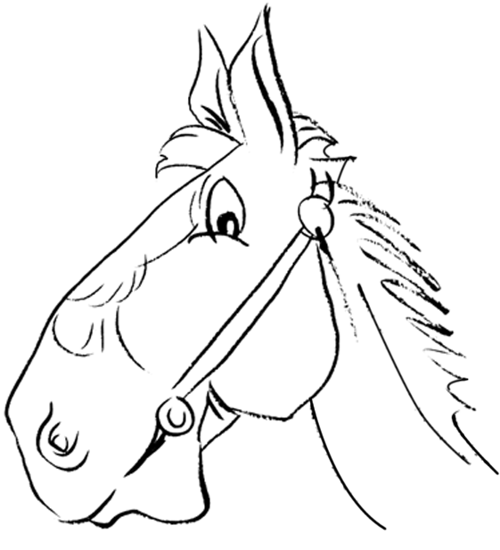 Horse head drawing for kids - photo#2