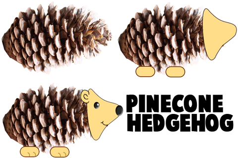 How to Make Porcupine Hedgehogs