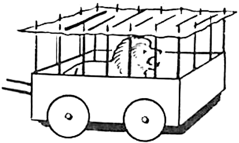 Traveling Circus Animal Cages