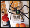 Spooky Spider Milk Jug & Pipe Craft