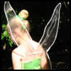 Tinkerbell Fairy Costume Lesson