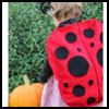 Lady   Bug Costume  : Making Easy Handmade Halloween Costumes