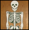 Poseable   Skeleton  : Making Scary Skeletons Arts and Crafts Projects