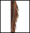 "Indian   Leg Fringes <span class=""western"" style="" line-height: 100%""> <span class=""western"" style="" line-height: 100%""> : American Indians Crafts Activities for Children</span></span>"