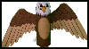 Bald Eagle Toilet Paper Roll Craft : Bird Crafts Activities for Kids