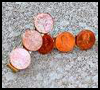 Coin    Barrettes  : Crafts Ideas with Money /  Coins for Kids