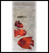 Recycled Soda Bottle Fish Mobile Craft for Children