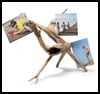 Driftwood   Photo Holder  : Crafts Ideas for Kids & Saving Travel Memories