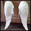 How to Make Homemade Angel Wings for Costume Instructions