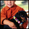 <strong>Colorful Dog Collar Craft  : How to Make a Pets Collar Craft for Kids</strong>