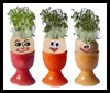 Cress Egg Heads Easter Craft Activity for Children