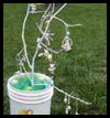 Easter Tree Branch Craft for Children